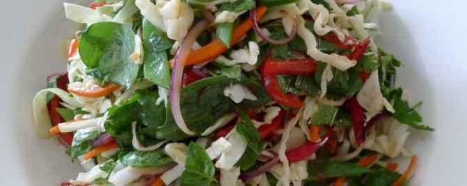 Vietnamese cabbage and herb salad