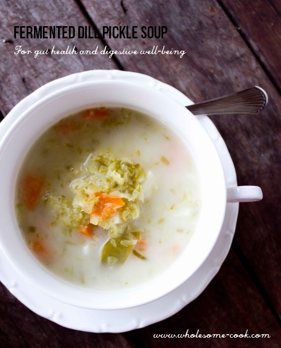 Fermented Dill pickle soup