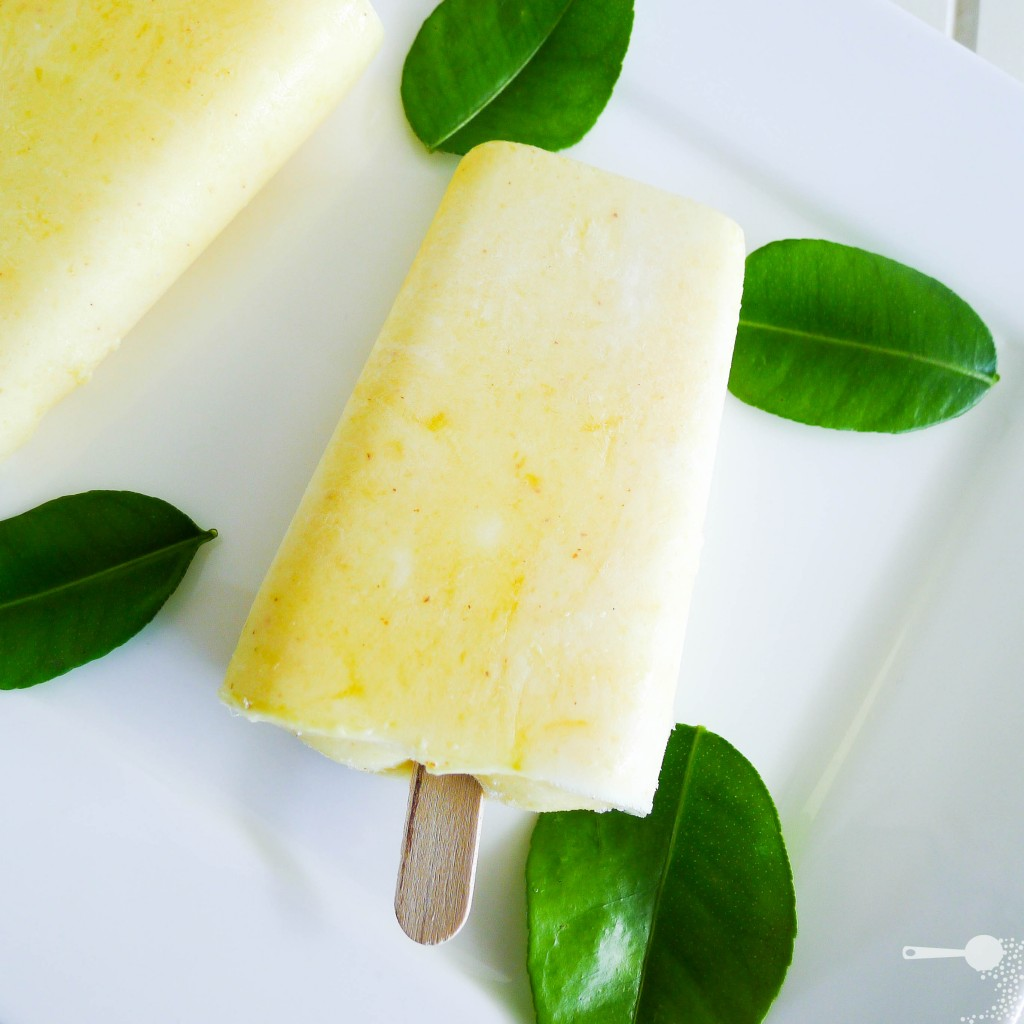 Mango and yoghurt ice blocks