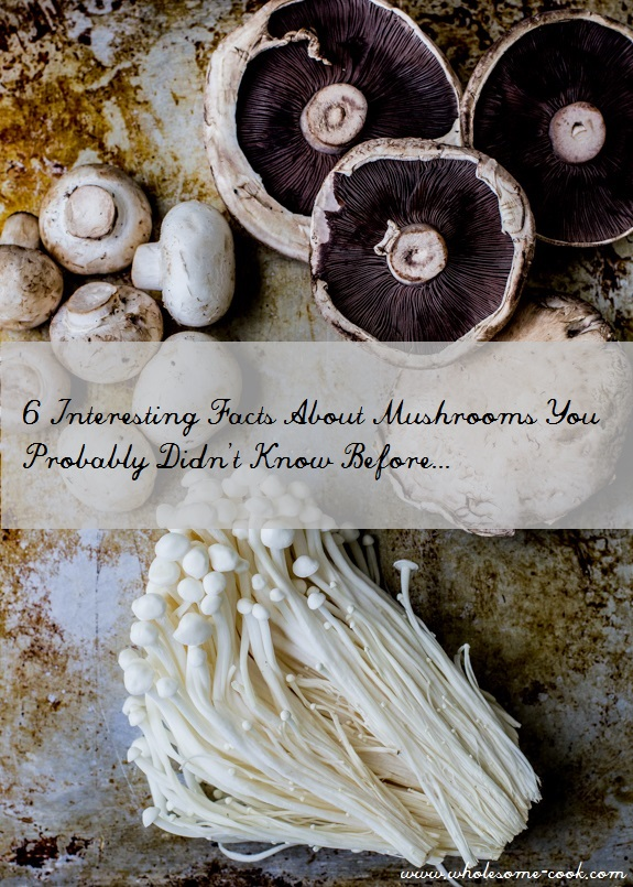 6 Interesting facts about mushrooms.
