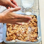Spiced Plum Streusel Cake